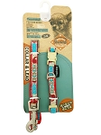 Touchdog Leash & Collar Set - TD-840 / TD-543