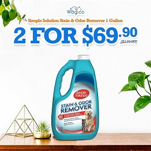 [HYGIENE CAMPAIGN] Simple Solution Stain+Odor Remover 3.75L