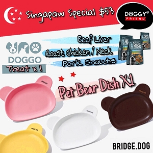 Bridge.dog & Uno Doggo $53 Promo
