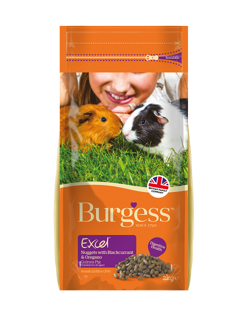 Burgess Excel Nuggets with Blackcurrant & Oregano for Adult Guinea Pigs 2kg