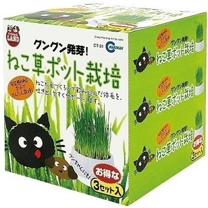 Marukan Cat Grass Pot 3pcs/set