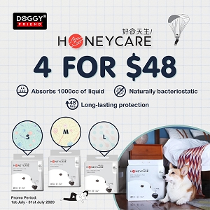 [JULY 2020 PROMO - 4 FOR $48] Honey Care Pet Training Pad