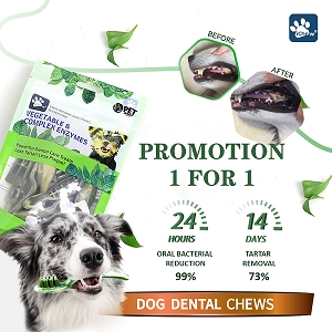 [BUY 1 FREE 1] Petunion iChew Vegetable & Complex Enzymes Dog Dental Chews
