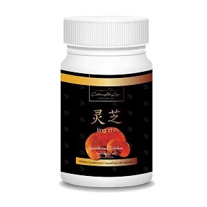Lingzhi Supplement for Both Cats & Dogs
