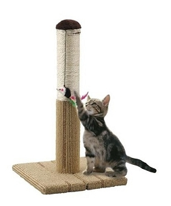Marukan Foldable Cat Scratch Tower