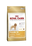 Royal Canin Poodle Adult 30