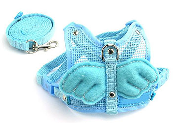 Angel Wing Harness Blue