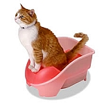 Cat Potty