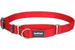 Red Dingo Martingale Half Check Small