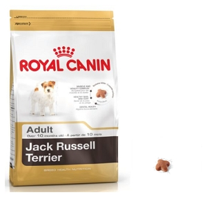 Royal Canin Jack Russel