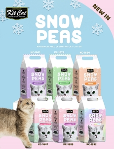 Kit Cat Snow Pea Litter 6 For $45