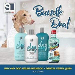 [FEB 2020 PROMO] Synergy Lab Dog Wash Shampoo + Dental Fresh