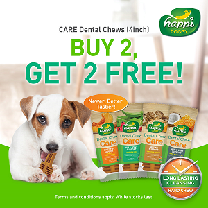[NEW Launch Promo - Buy 2 Free 1] Happi Doggy HARD Dental Chew Care 150g