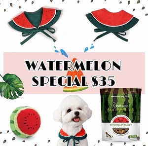 Watermelon Special