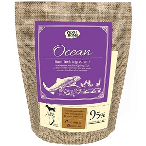 WishBone Adult Ocean