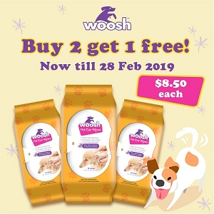[Buy 2 Free 1] Woosh Ear Wipes