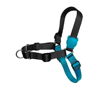 ZeeDog Monoby Soft Walk Harness