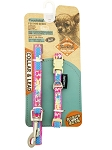 Touchdog Leash & Collar Set - TD-895 / TD598