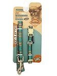 Touchdog Leash & Collar Set - TD-710 / TD-413