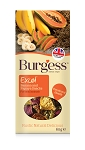 Burgess Excel Banana & Papaya Snacks