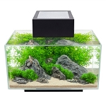 Fluval Edge Aquarium Set LED