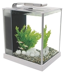 Fluval Spec Desktop Glass Aquarium 10l