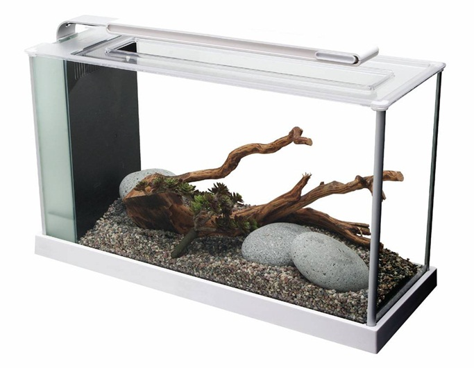 Fluval Spec Desktop Glass Aquarium 19l