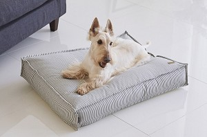 Barbichon Snug Bed - Edge Stripe