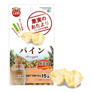 Marukan Freeze Dried Pineapple for Small Animal 15g