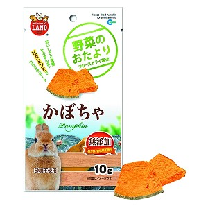 Minimal Land Freeze Dried Pumpkin for Small Animals