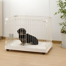 Pet Crate with Casters (for dogs)