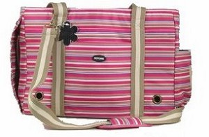Petcare Pet Carrier (Medium Stripe)