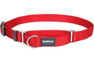 Red Dingo Martingale Half Check Large
